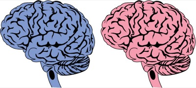Seksverslaving en de hersenen (Artikel: Plosone)